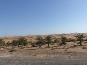 17a-UAE_to_Fujairah_3a