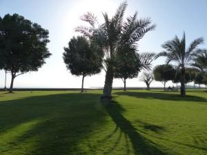26-UAE_Fuj_Park_Bildgröße ändern
