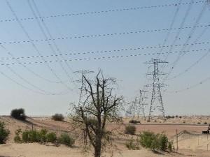 5g-UAE_to Al-Ain_4