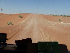 6_UAE_Al-Ain-Raziq-Weg
