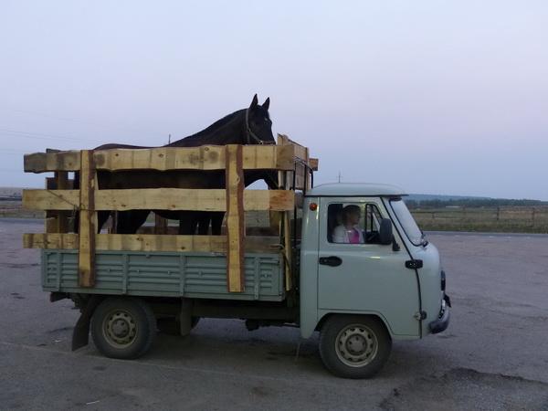 33-RUS_to-Baikal_Traber_!