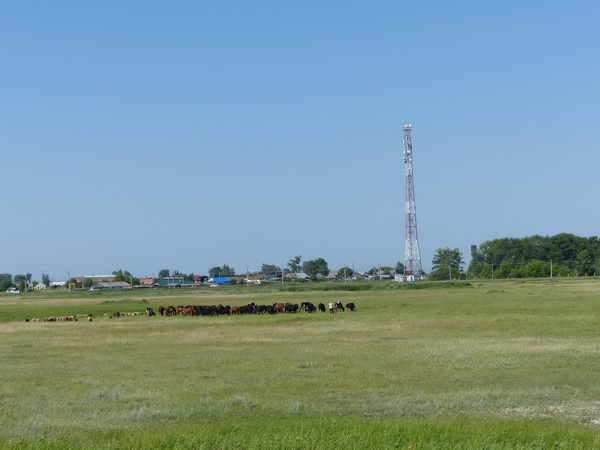 61-RUS-to-Chelyabinsk_Dorf-gr.Herde_!