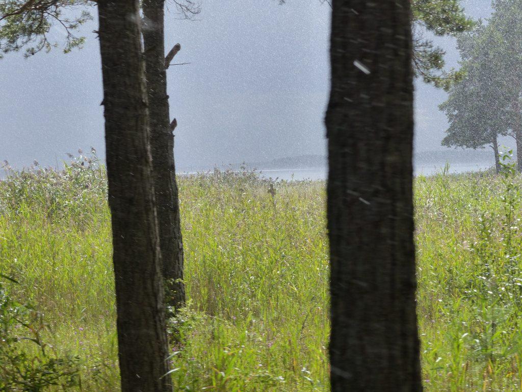 3.16_S_Möseras_Schär_Regen