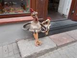 23b_LT_18-9-04_Vil_Hühner