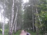 34_RUS_18-7-26_Yas.P_Alex-Hd
