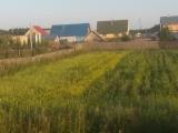 37_RUS_18-8-01_hi.Beleo_Dorf-Garten